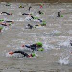 Triathlet Kraulschwimmen